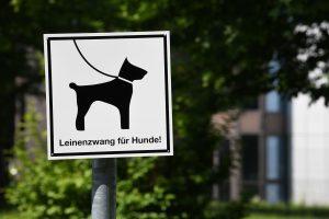 Schild Leinenzwang für Hunde