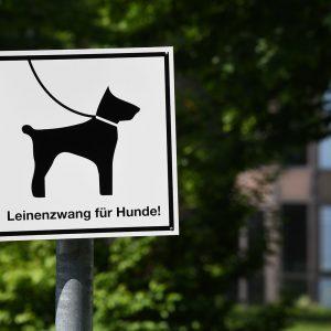 Umfassender Leinenzwang im Entwurf des Berliner Hundegesetz verstößt gegen Tierschutzrecht